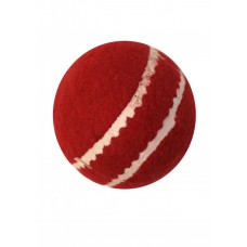 Cricket Red Tennis Ball with seam
